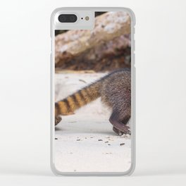 Funny wild racoon feeding in Costa Rica Clear iPhone Case