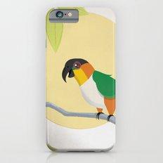 Black-Headed Caique Parrot Slim Case iPhone 6s