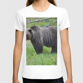 Grizzly encounter in Jasper National Park T-shirt