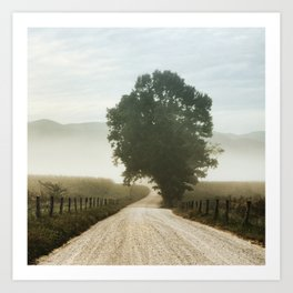 Cades Cove Tree of Life Landscape Photograph Gatlinburg Tennessee Art Print