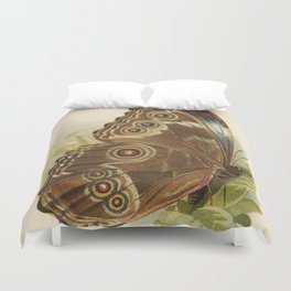 Antique Butterfly Lithograph Duvet Cover