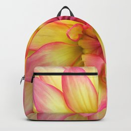 Pink and Yellow Dahlia Flower / Nature Macro Photography Backpack