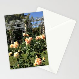Huntington Roses: III Stationery Cards