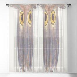 The Odd Owl Sheer Curtain