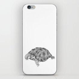 Little tortoise iPhone Skin