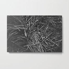 Animal Bed Metal Print