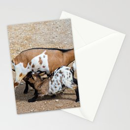 Goat feeds her goatlings, outdoor shooting in good weather Stationery Cards