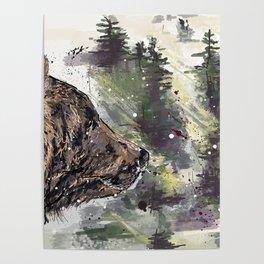 Boreal Bear Poster