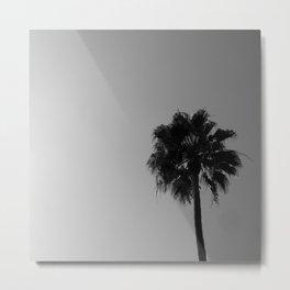 Palm Tree, 2 Metal Print
