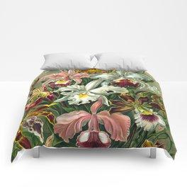 Victorian Orchids Floral Print-Ernst Haeckel Comforters