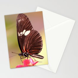 Rainbow Butterfly Stationery Cards