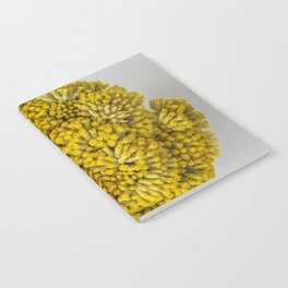 curry flowers II Notebook