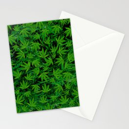 Weedy Square Stationery Cards