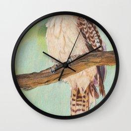 Kookaburra, Australian Bird Wall Clock