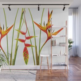 3 Exotic Jungle Flowers Helikonias white background Wall Mural
