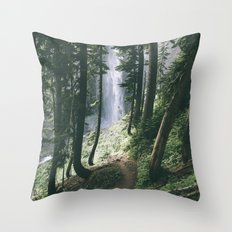 To The Falls Throw Pillow
