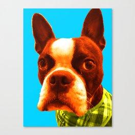 Boba Boston BLue Canvas Print