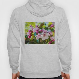 Pink apple blossom Hoody