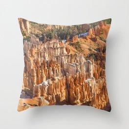 Hoodoo Bonanza Throw Pillow
