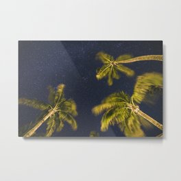 Palm trees at night against starry sky Metal Print