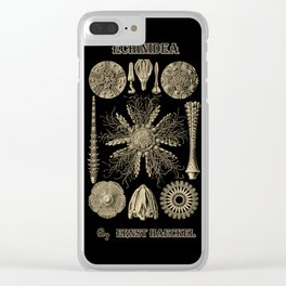 """""""Echinidea"""" from """"Art Forms of Nature"""" by Ernst Haeckel Clear iPhone Case"""