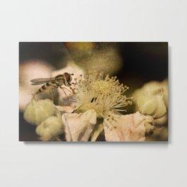Hover Blossom Metal Print