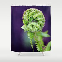 fern Shower Curtains featuring Fern by LoRo  Art & Pictures