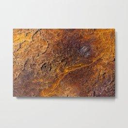 Not Mars Metal Print