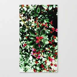 Floral Art AZALEA Canvas Print