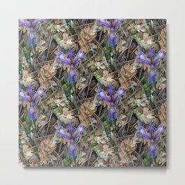 Wild Irises in the woods.... Metal Print