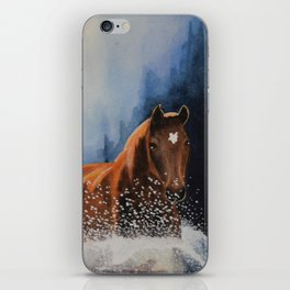 Water Horses iPhone Skin