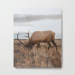 Wyoming Metal Print