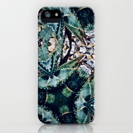 Succulents On Show No 3 iPhone Case