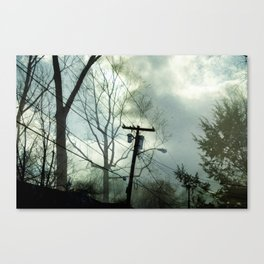 Landfall Canvas Print