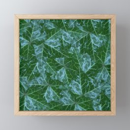 Myrtle Ming English Ivy Framed Mini Art Print