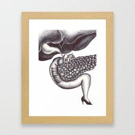 Ampulla of Vater and Sphincter of Oddi Interlude Framed Art Print