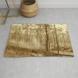 Stunning view of bushfire aftermath Rug