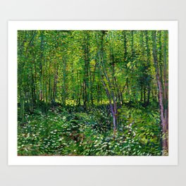 Vincent Van Gogh Trees and Undergrowth 1887 Art Print