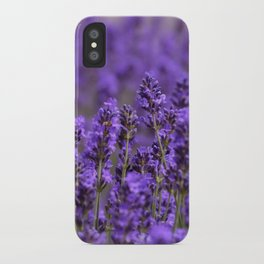 the smell of lavender -c- iPhone Case