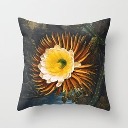 'The Night Blowing Cereus' Cactus by Philip Reinagle (flower) and Abraham Pether (background) Throw Pillow