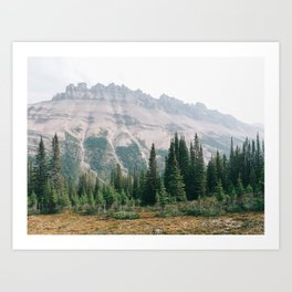 Mountain Forest - Landscape Photography Art Print