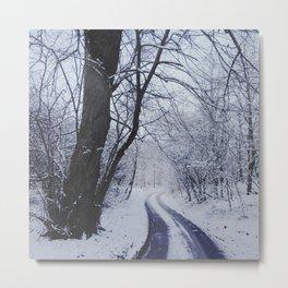 Snowy road. Metal Print