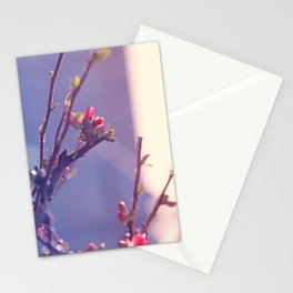 Early Spring Love 2 Stationery Cards