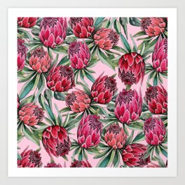 Protea Water color on pale pink Art Print