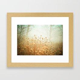 The Magic of Fog Framed Art Print
