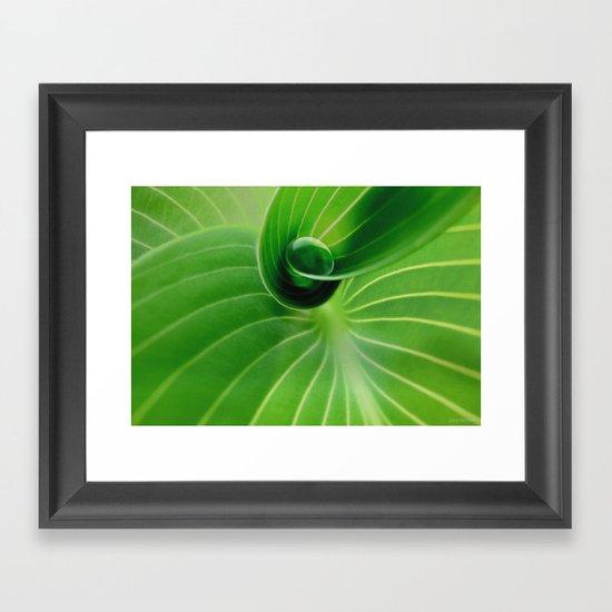 Leaf / Hosta with Drop (2) Framed Art Print