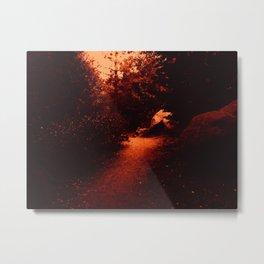 0409 Metal Print