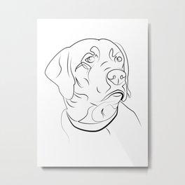 Labrador Retriever Line Drawing Metal Print