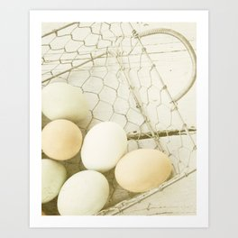 Robin's Egg Farm Art Print