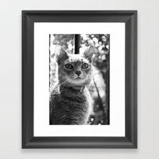 Le chat Framed Art Print